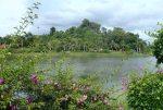 ThailandTrangTown_Ents_TEMP_34_P4281586.JPG