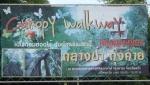 ThailandTrangTown_Ents_TEMP_37_P4301735_squared.jpg