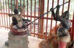 ThailandTrangTown_Ents_TEMP_51_P1064218.JPG